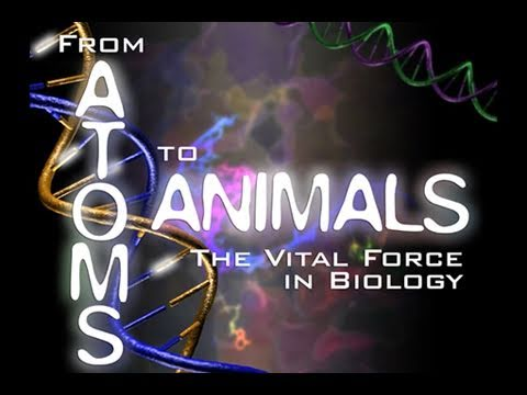 Public Lecture—From Atoms to Animals: The Vital Force in Biology