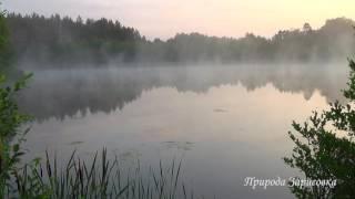 Синий туман, Красивая природа. Звуки природы. Релакс. Медитация. Река. Рассвет. Сиреневый туман.