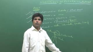 Morphology of Flowering Plants by M.Asad Qureshi (MAQ) Sir (ETOOSINDIA.COM)