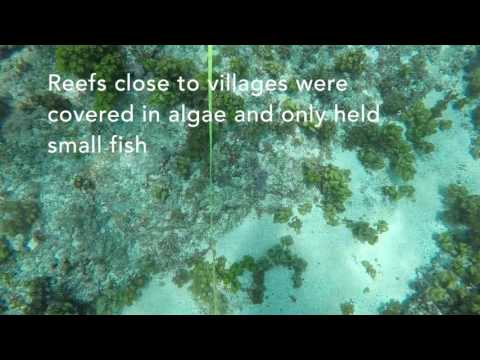 Vanuatu social-ecological resilience mapping