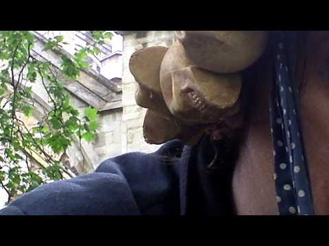 It Is Just The Way It Is: Old Palace Yard Meanderings 2013. Part 04