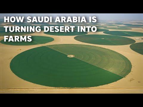How Saudi Arabia Is Turning Desert into Huge Farmlands