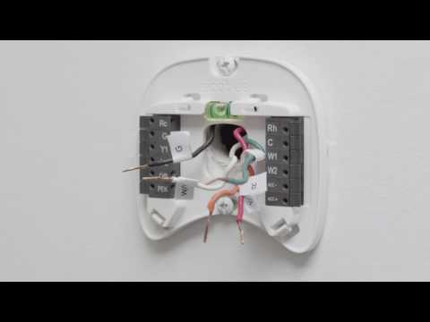 Ecobee Support Installing Ecobee4 With A C Wire Youtube