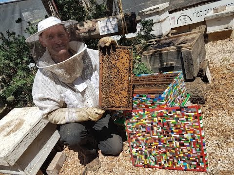 Jason King - Beekeeper Makes 'Fully Operational' Hive Out of Legos