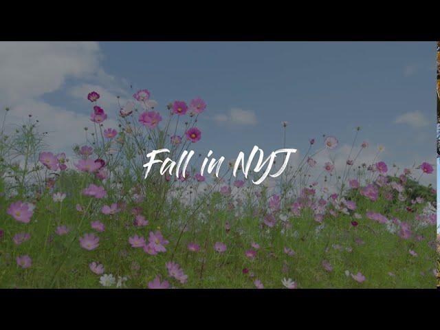 Fall in NYJ