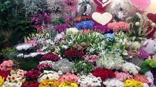 İzmir Kesme Çiçek Toptan,Toptan Kesme Çiçek