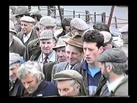 Livestock Auctions Mid Wales 1994