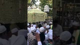 Haul Sunan Ampel oleh Habib Lutfi bin Yahya 5-5-2018