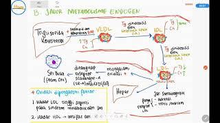 Analisa lemak darah cholesteril dan Trigliserida penting bagi ATLM Indonesia, juga analisis Lipoprot.