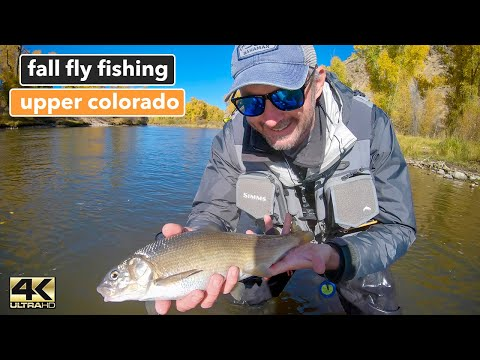 FALL FLY FISHING THE COLORADO RIVER ... A Collaboration With The @Colorado Fisher