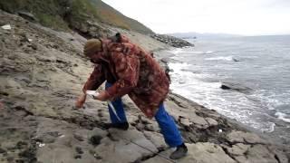 минтай с берега на джиг владивосток