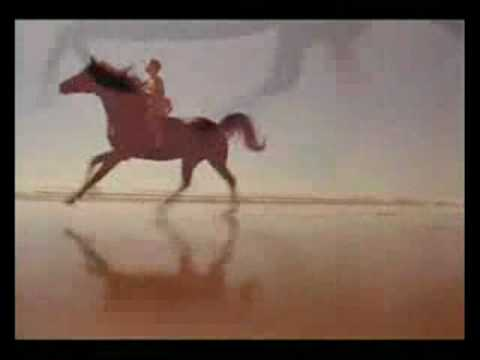 Shuunka Wakan ~ Spirit of the Horse