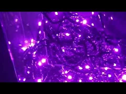 Guirlande lumineuse LED clignotant ROSE fil noir - YouTube