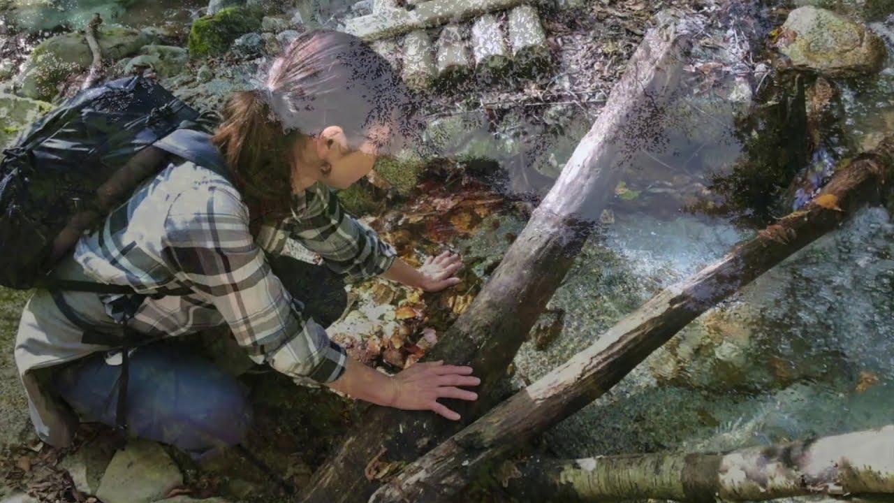森歩き日記 Vol.11 「初めての滝までトレッキング」