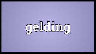Gelding Meaning