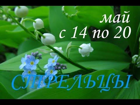 СТРЕЛЬЦЫ. ТАРО-ПРОГНОЗ на НЕДЕЛЮ С 14 ПО 20 МАЯ 2018г.