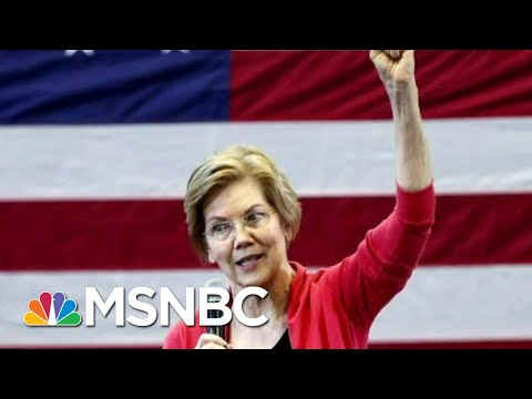 Elizabeth Warren Wants To Break Up Big Tech | All In | MSNBC