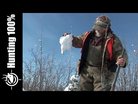 Rock Ptarmigan Hunting In Canada