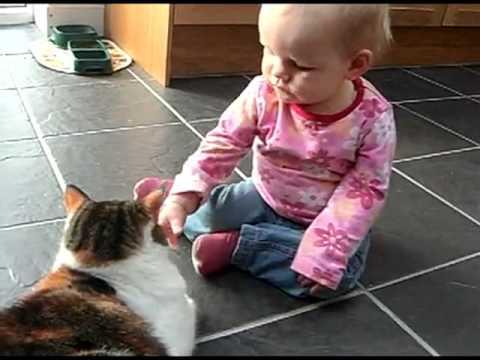 Adventures Of Children And Cats مغامرات الأطفال والقطط