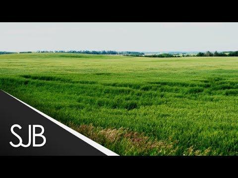Rural Field