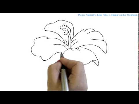 how to draw a hibiscus flower yzarts yzarts