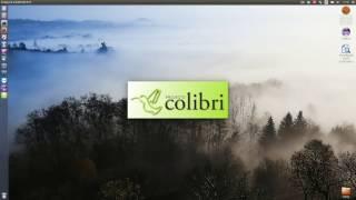 Projecto Colibri RCP 11 - Campos Extras