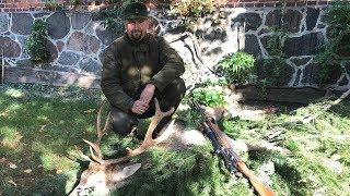 Как начать охотиться в Германии
