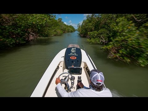 Wild Instinct Outdoors - Expedition Everglades - Season 1, Ep. 9 - WIO