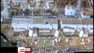 Fukushima Radiation Lie Report 5/15/11