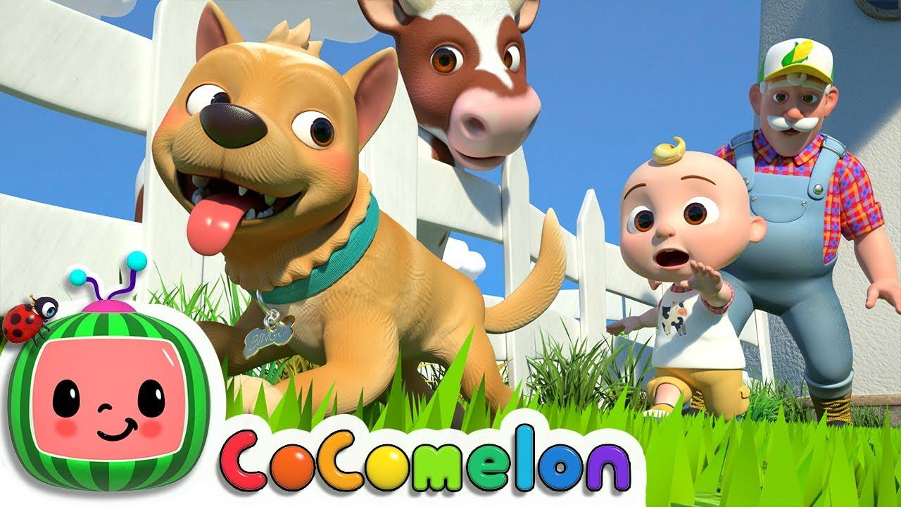 Bingo (Farm Version) | CoComelon Nursery Rhymes & Kids Songs