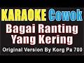 BAGAI RANTING YANG KERING ~ COWOK Key C By KORG PA700 KARAOKE COVER