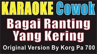 Download BAGAI RANTING YANG KERING ~ COWOK (Key C) By KORG PA700 (KARAOKE COVER)