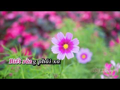 Siết Chặt Bàn Tay Karaoke   Giọng Nữ   Beat Chuẩn   YouTube