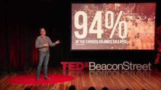 Drones make better wine | David Baeza | TEDxBeaconStreet