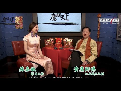 2019《鷹明天下》EP 5: 生肖蛇, 馬, 羊生肖運程 Fengshui with Master Eagle Wong 【天下衛視官方頻道 Sky Link TV YouTube Channel】