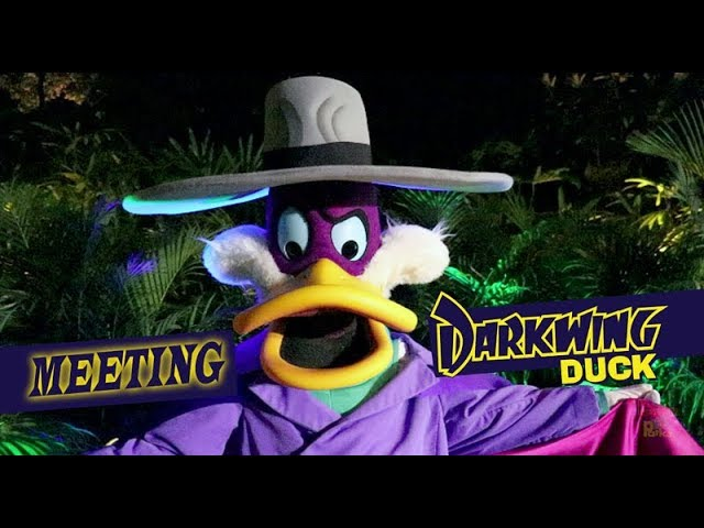 Meeting Darkwing Duck at Disney's Moonlight Magic