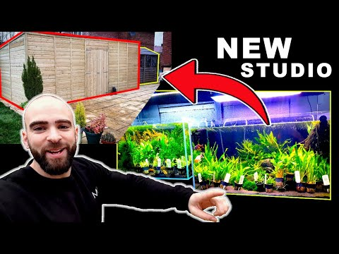 New Studio Build Begins + Huge Plant Delivery! | MD FISH TANKS