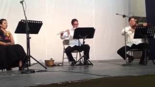 Tristes Jardines - Vivaldi Musica