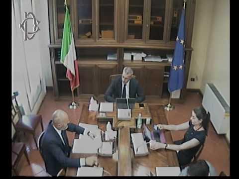 Roma - Audizione Stella, direttore Agenzia veneta pagamenti in agricoltura (30.05.17)