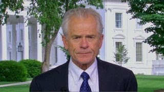 Peter Navarro was out of line: Robert Wolf