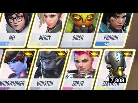 Overwatch Hero Gallery NEW World Record 10,64 Seconds any%