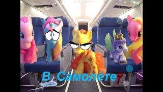 My little pony. В самолете.