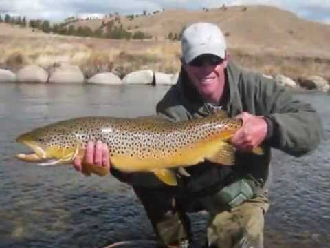 Biggest Brown Trout You Have Ever Seen!!!