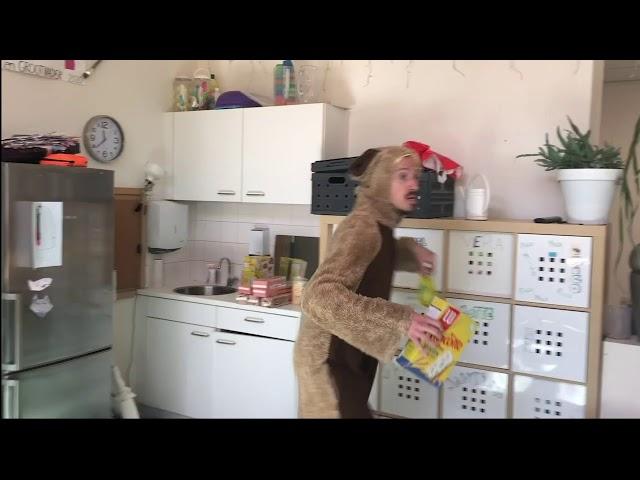 #DONSTHUIS: HAMSTERVLOG - DEEL 5 - HAMSTERSPELLEN