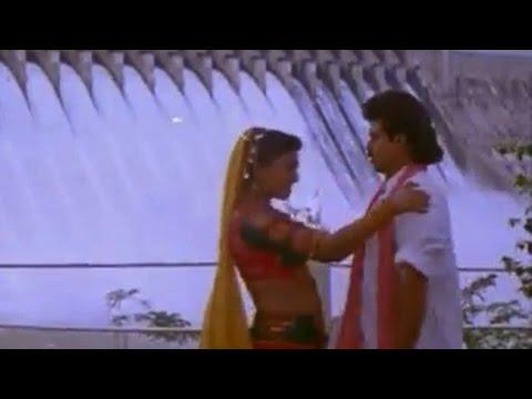 Pokiri Raja Movie || Kalaga Vachinavu Video Song || Venkatesh, Roja, Prathibha Sinha