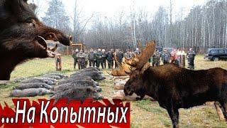 Рай Для Охотников.  Большая Белорусская ОХОТА.