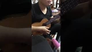 Chỉ vì tôi không tin ukulele