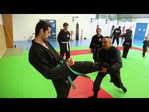 La meilleur école de ninjutsu en France - Le monde des arts martiaux- BERNARD BORDAS 忍者