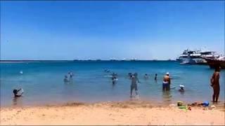 Сказочный пляж в Египте(, 2015-07-03T20:15:16.000Z)