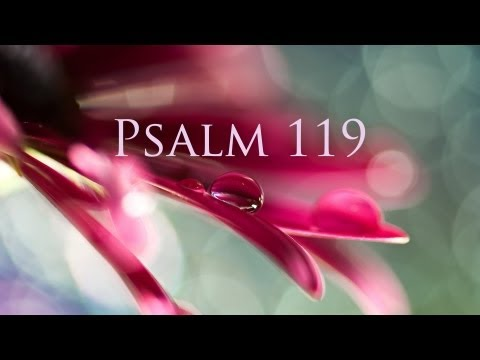 Psalm 119_First Edition (HD)